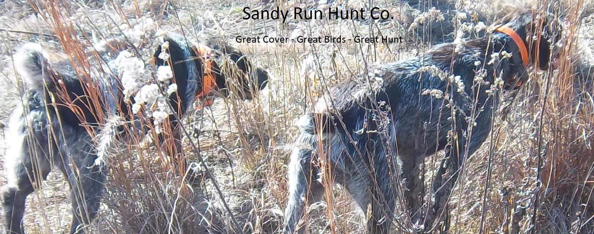 Sandy Run Hunt Co.